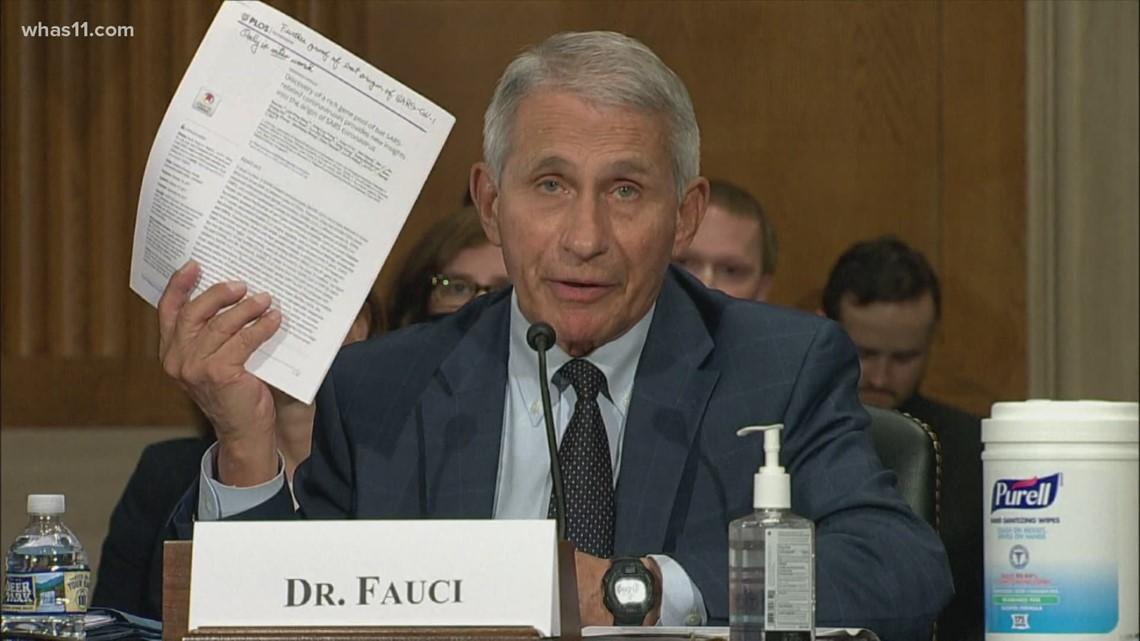 Dr. Fauci, Sen. Rand Paul argue at COVID hearing