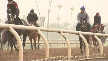 Racing at Santa Anita canceled after 21st horse dies