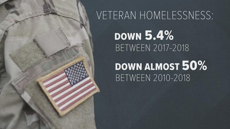 Veteran homelessness stat