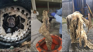 Think before you flush! What MSD employees say are clogging their pipes