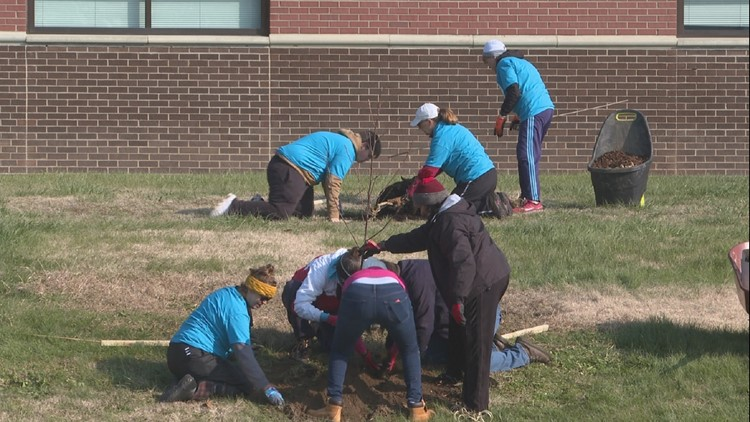 volunteers plant trees during LG&E's Day of Caring