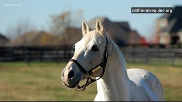Kentucky company donates markers for horse cemetery