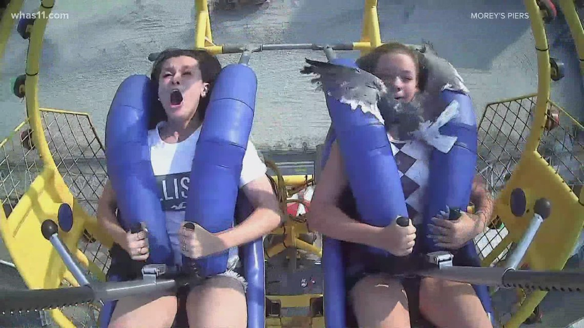 Seagull hits teen in the face while she's on a ride at an amusement park