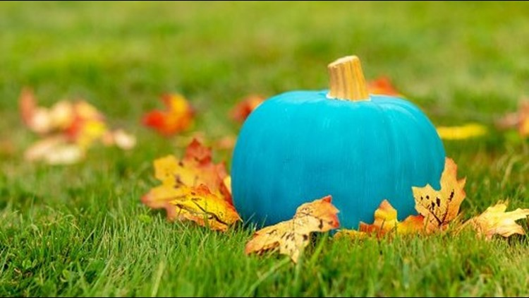 This 'Teal Pumpkin Map' tells you where to find homes safe from food allergies this Halloween