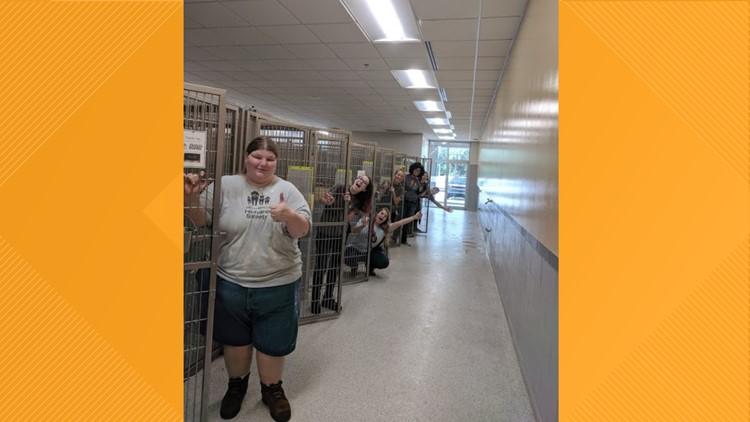 Jacksonville Humane Society celebrates empty cages