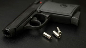 New Kentucky law allows gun owners to concealed carry without permit