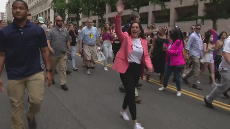 Vice President Kamala Harris attends DC's Pride parade event on Saturday